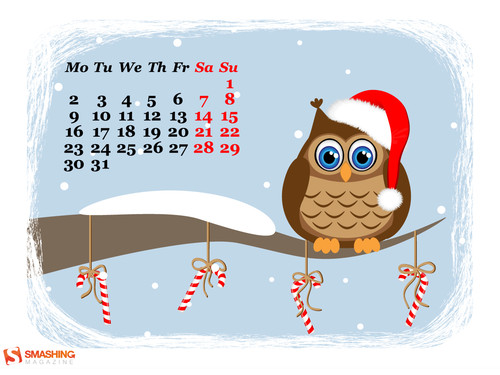 Funny owl waiting for Holidays