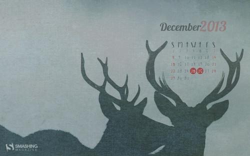 Wild December