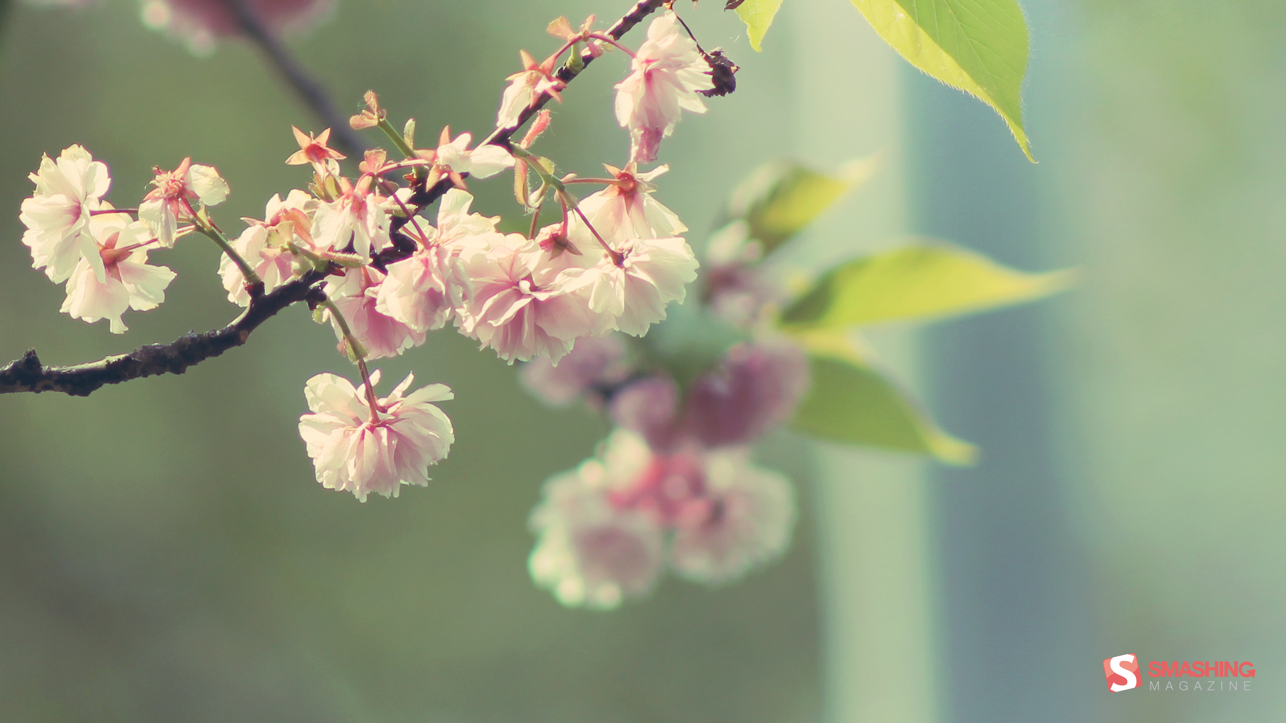Desktop Wallpaper Calendar: May 2013 | Ruturaj Pradeep Kohok | Your ...
