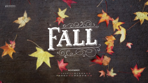 My First Fall