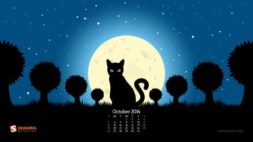 Night of the Black Cat